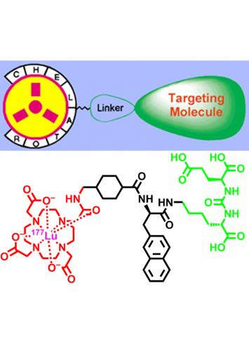 Anorg_Hermann_Targeted-ligands_thumbnail.png